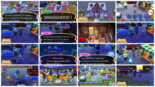 jeux vidéos, Animal Crossing New Leaf, Skyrim, X Box, Nintendo 3 DS, challenge geek