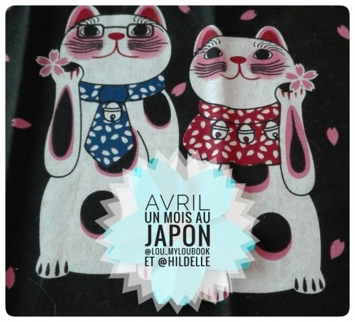 Un mois au Japon chat.jpeg