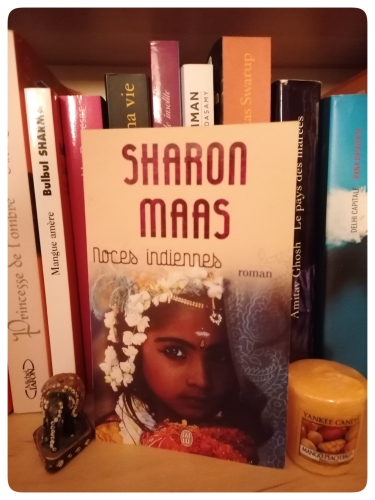noces indiennes,sharon maas,roman,inde,les étapes indiennes