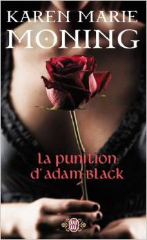 la punition d'adam black,karen marie moning,roman,romance