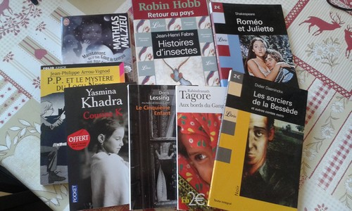 week-end à 1000 pages, lecture,